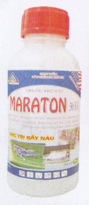 MARATON 30EC