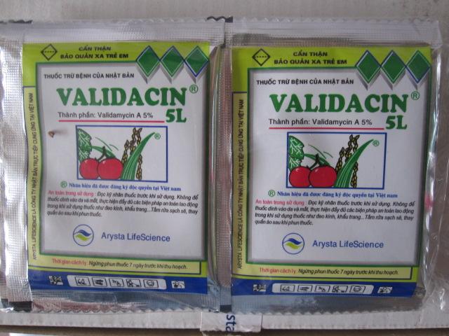 VALIDACIN 5L
