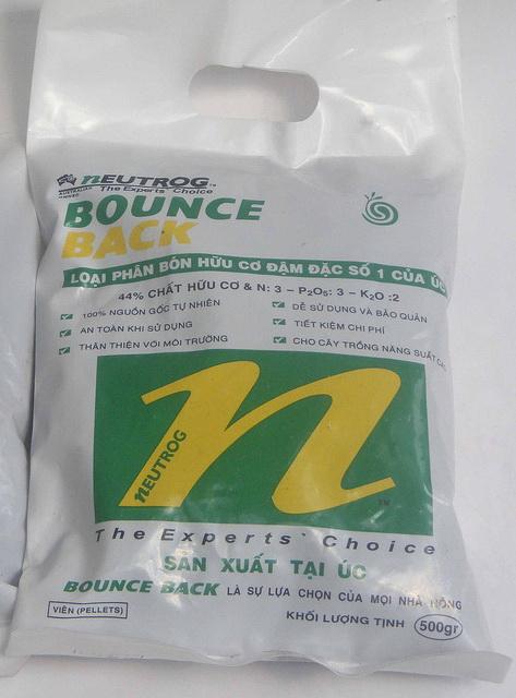 BOUNCE BACK 5kg