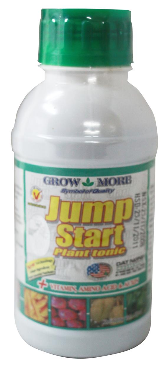 GROWMORE JUMP START 3.8lít